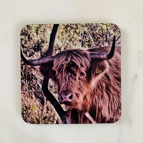Highland Cow - Tan Coaster