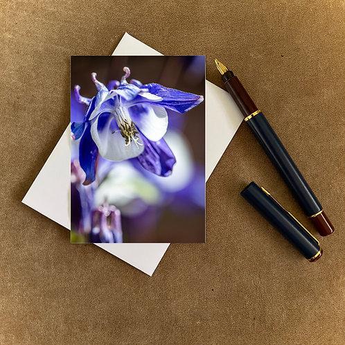 Aquilegia Blank Mini Photocard