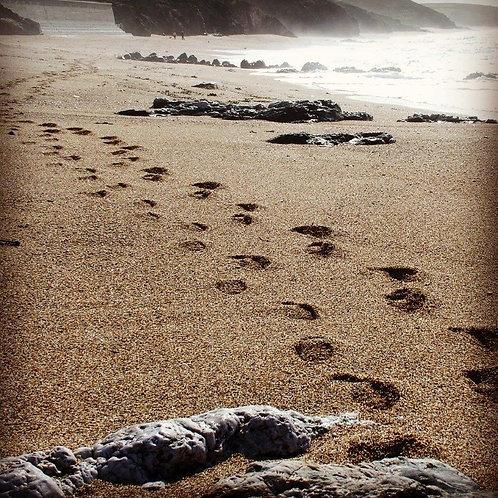 Footsteps Notecard
