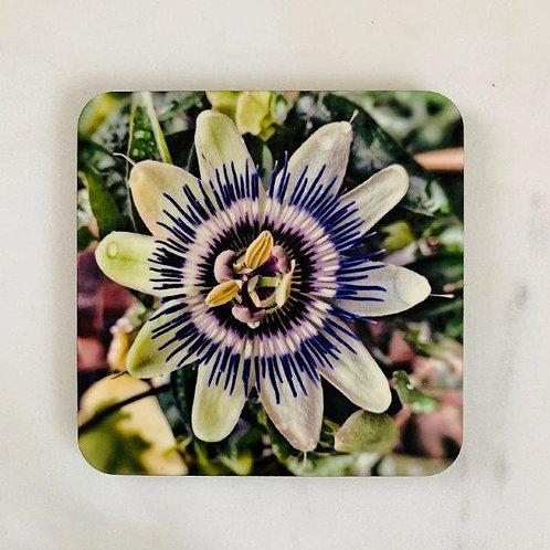 Passion Flower Coaster