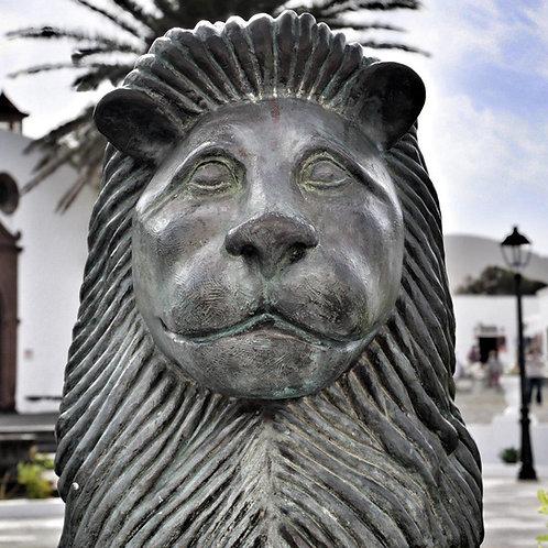 Lion Sculpture Blank Card