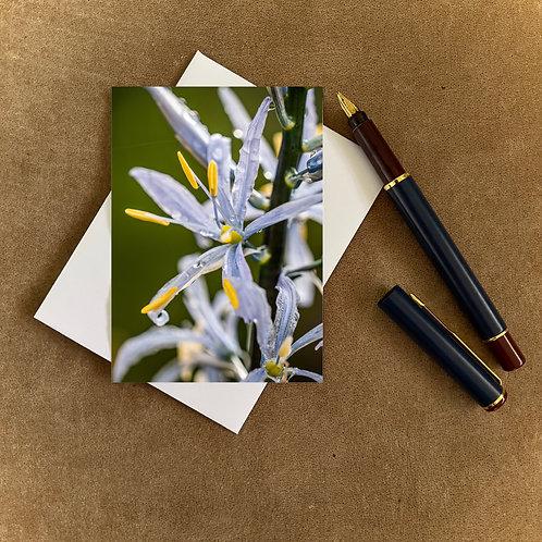 Spring Flower Blank Mini Photocard