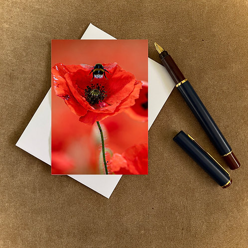 Poppy and Bumble Bee Blank Mini Photocard