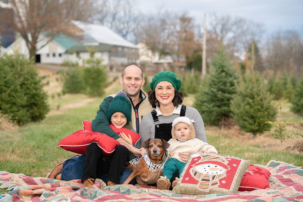 Family at Christmas in a tree farm with dog and little kids