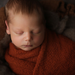 Baby Wilder