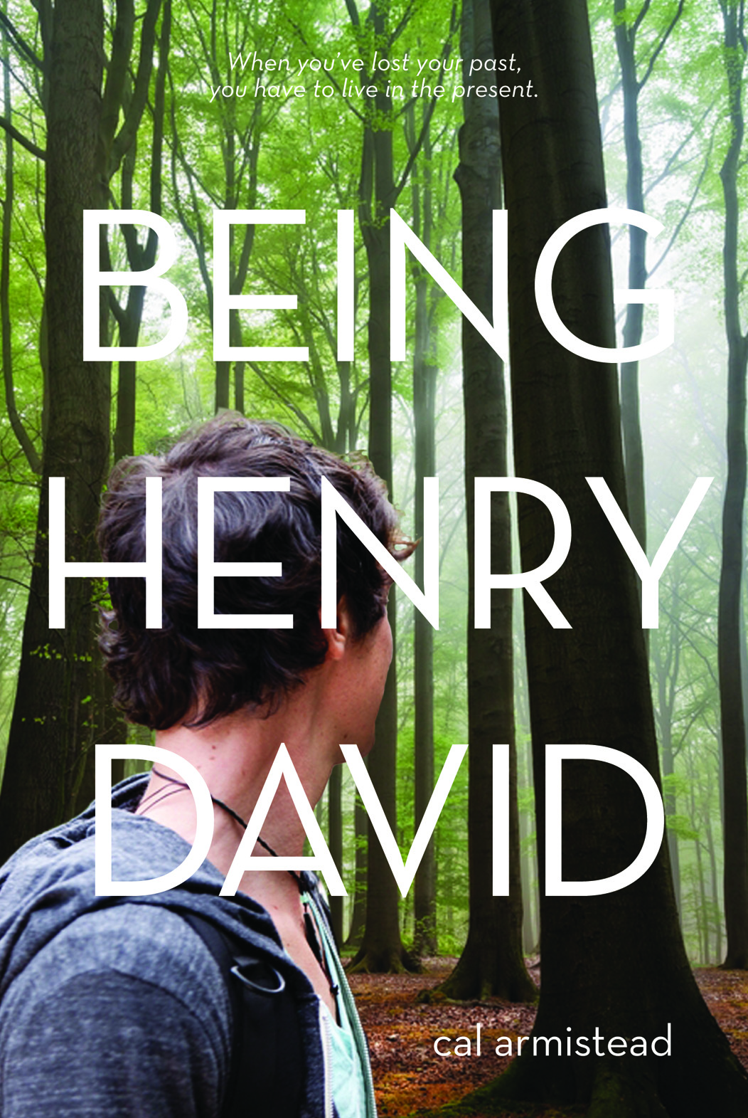 BEING HENRY DAVID cover
