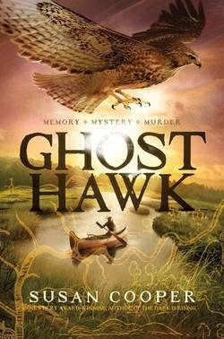 Ghost Hawk