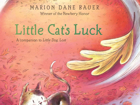 Review: Little Cat's Luck
