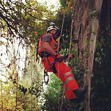 rope access vegetation control