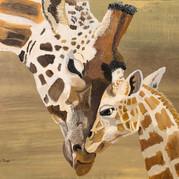 Bonding Giraffes.jpeg