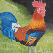 Alex-Biagi -Rooster 2017 14h by 18w.png