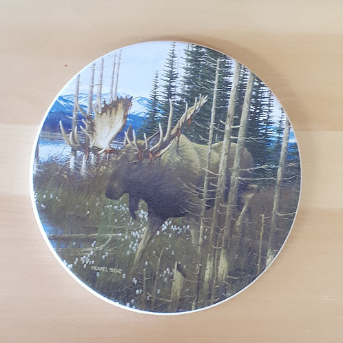 Moose Coaster Set of 4