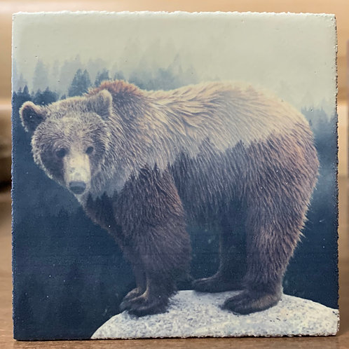 Forest Bear Sign
