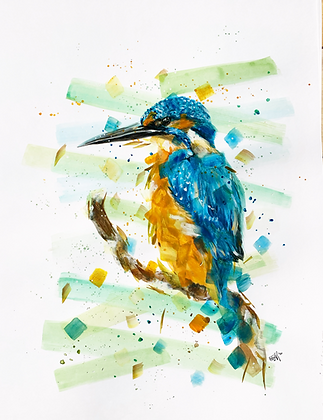 'Kingfisher' Limited Edition Print