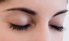 eyelash and eyebrow tint palm beach gard