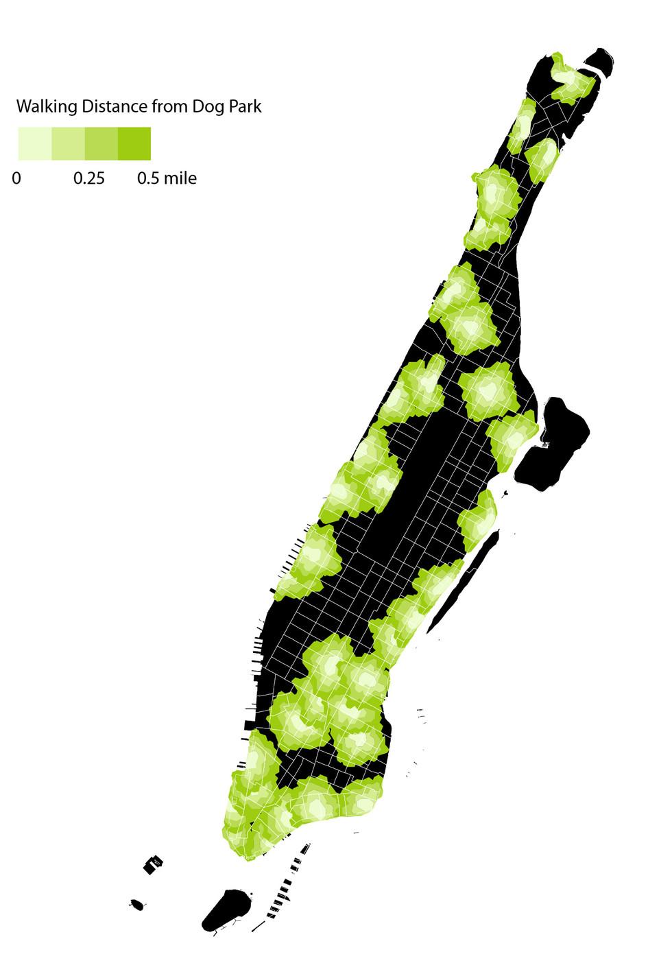 Walking Dogs in Manhattan
