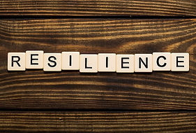 Resilience therapy, resilience coaching, resilience training, resilience workshops
