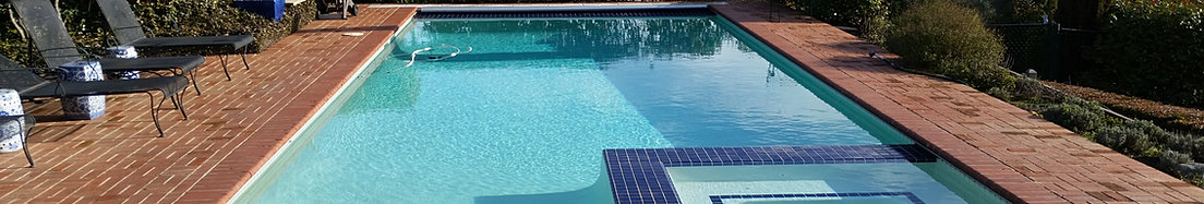 Pool And Spa Cleaning Company Apex Pool Service Roseville Ca
