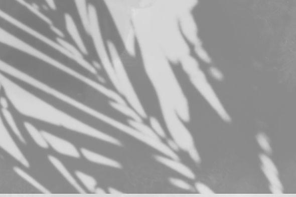 shadowbackground.jpg