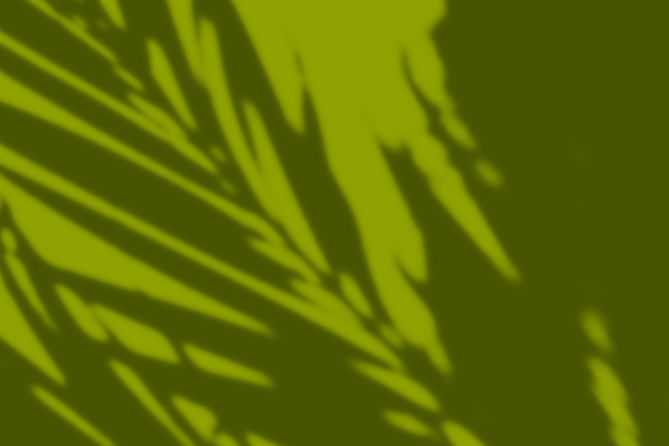 shadowbackgroundgreen.jpg
