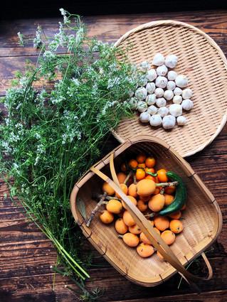ビワ、金柑、にんにく、パクチーの花