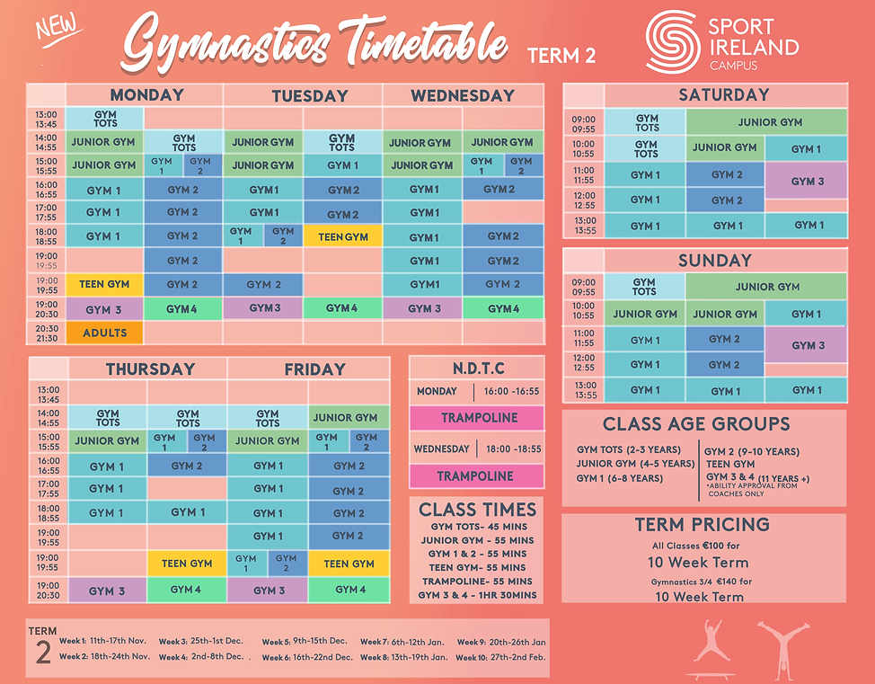 Gymnastics TERM 2 2019 PRINT-1.png