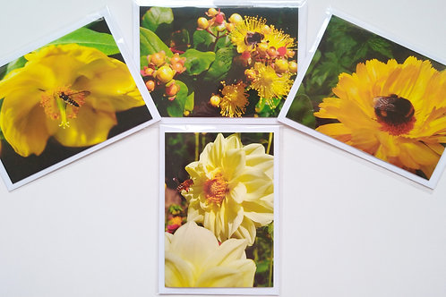 Bee Greeting Cards 4 Card Multipack