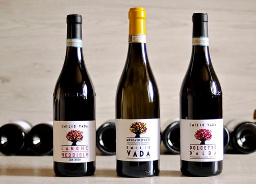 I vini di Emilio Vada