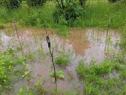 début de l'inondation