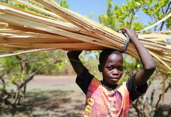 Porteur de lamelles de bambous
