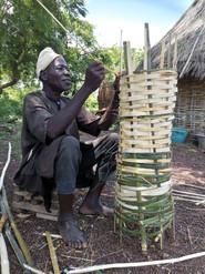 protection en bambou pour les jeunes arbres