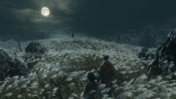 Beautiful flower field bathed by the moonlight in an incredible night landscape with some characters from the game Sekiro: Shadows Die Twice