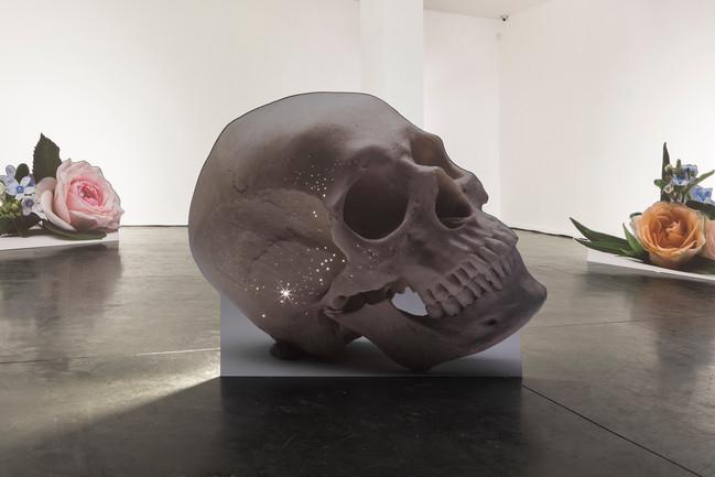 skull-small.jpg
