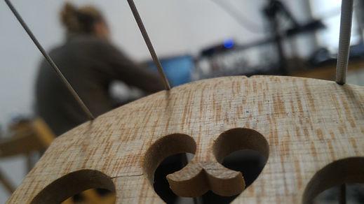 Alex Jellici cello strings