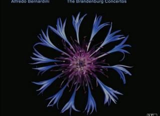 CD Release: THE BRANDENBURG CONCERTOS with Ensemble Zefiro