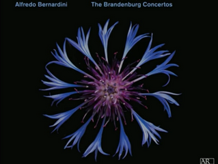 CD Release: THE BRANDENBURG CONCERTOS with Ensemble Zefiro
