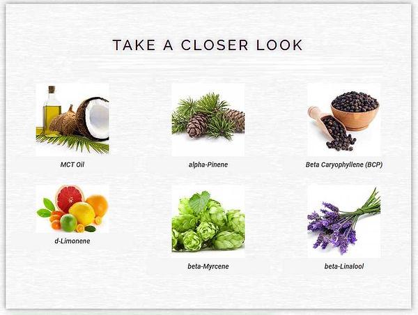 CBD-LOOK.jpg