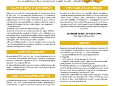 Corso di apicoltura di 1° livello ore 100 gratuito come da bando della Regione Marche