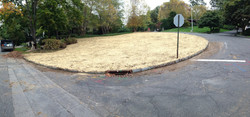 Seeded and Blanketed w/ Hay