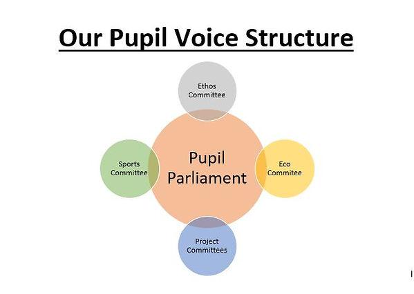 Pupil Voice Structure.JPG