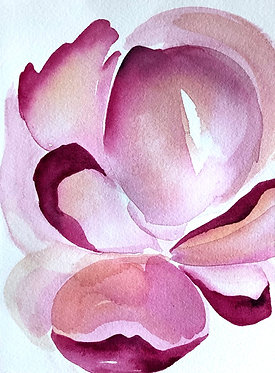 magnolia   8x10