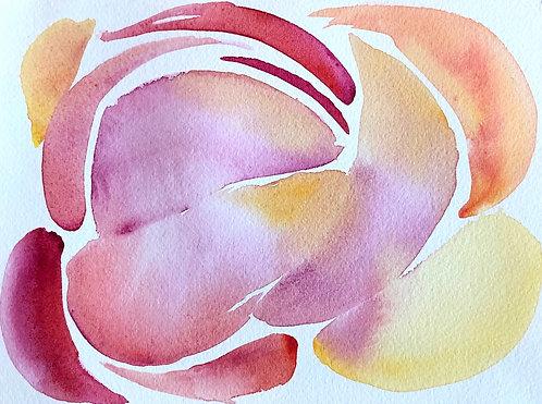 fallen petals | 8x10