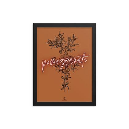 Petit Pomegranate