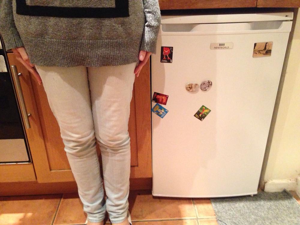 Qual a necessidade de uma geladeira mesmo?