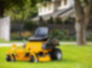 Hustler Dash in grass.jpg