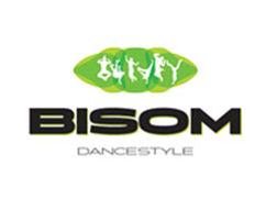 Bisom Dancestyle, Hochdorf