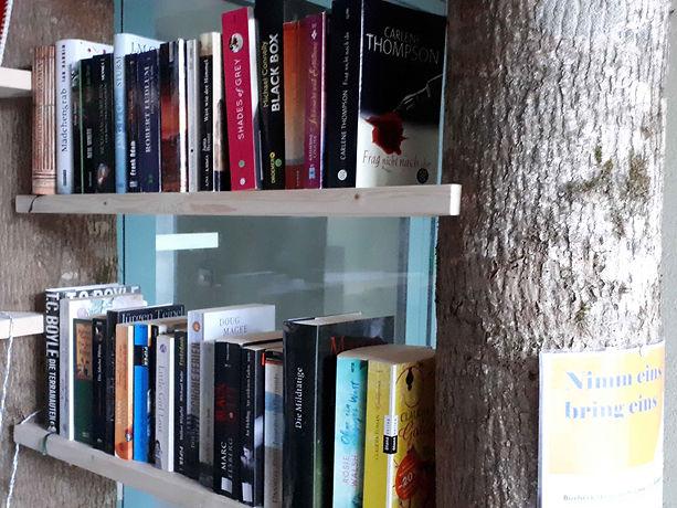 Bücherkabine des Frauenbund Hochdorf beim Bellevue Center