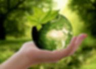 2020_02 - Nachhaltigkeit_web.jpg