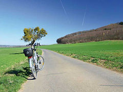 E-Bike-Tour im Seetal