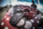 1DXM0283-300x200.jpg